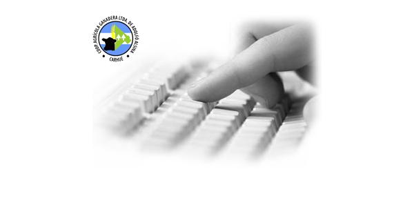 Sistema de consultas de Cuenta Corriente on-line